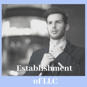 establishment of LLC Switzerland